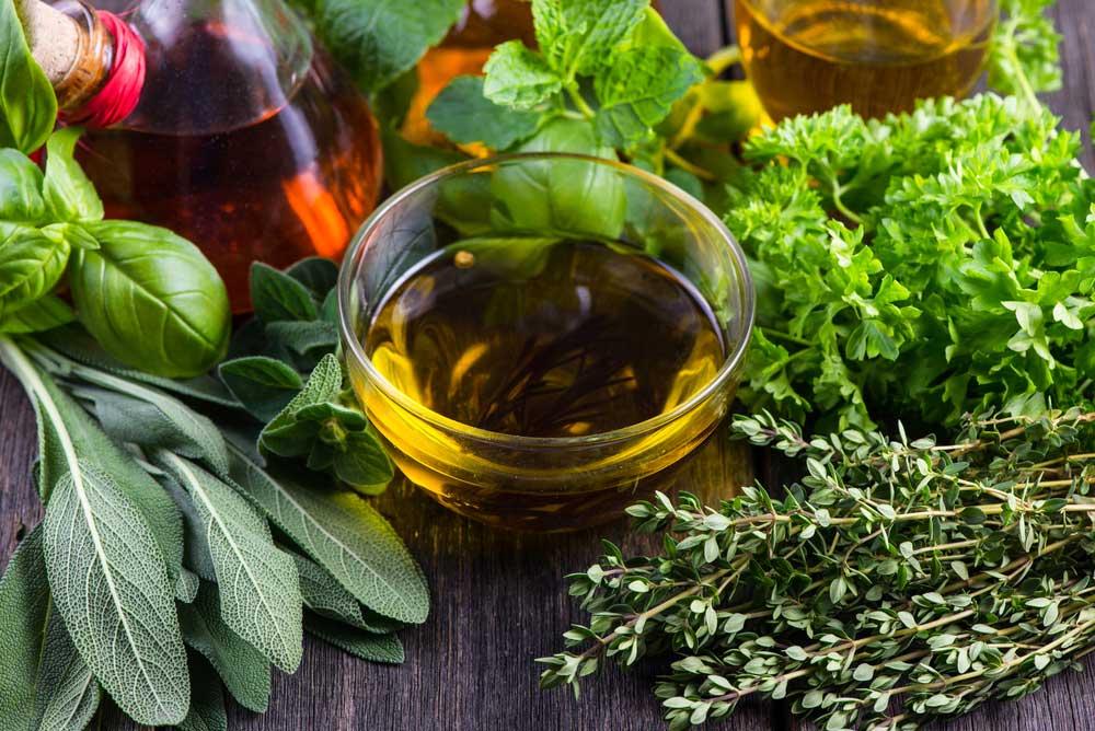 3 Plantas medicinales para la diarrea