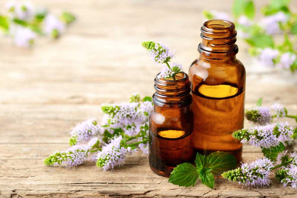 Cómo preparar aceite esencial de menta